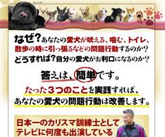藤井聡の犬のしつけ教室DVD